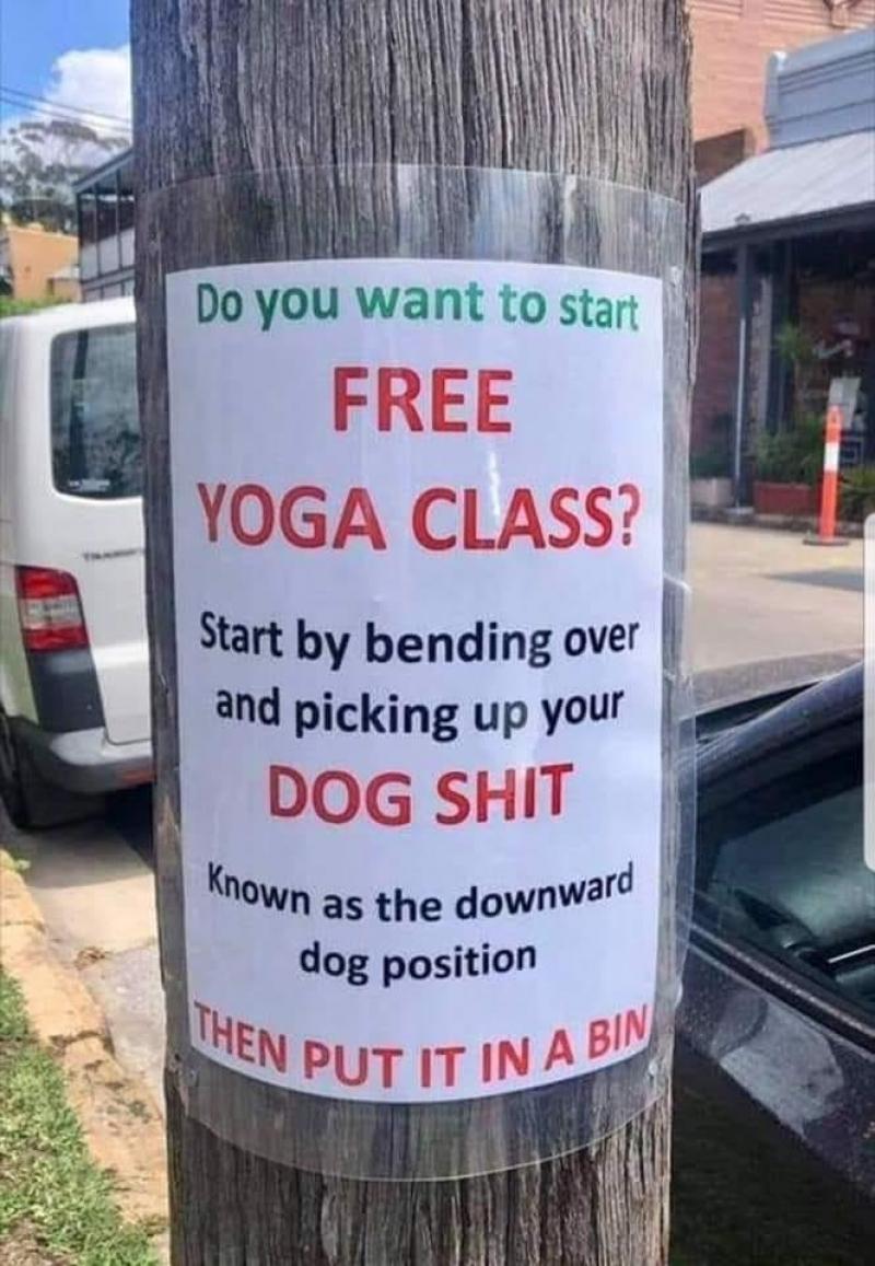 Gratis yogales