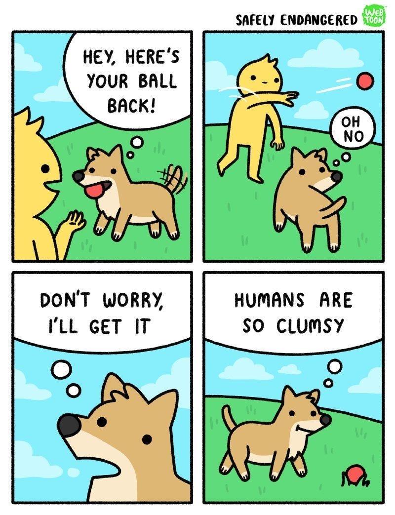 Honden en ballen