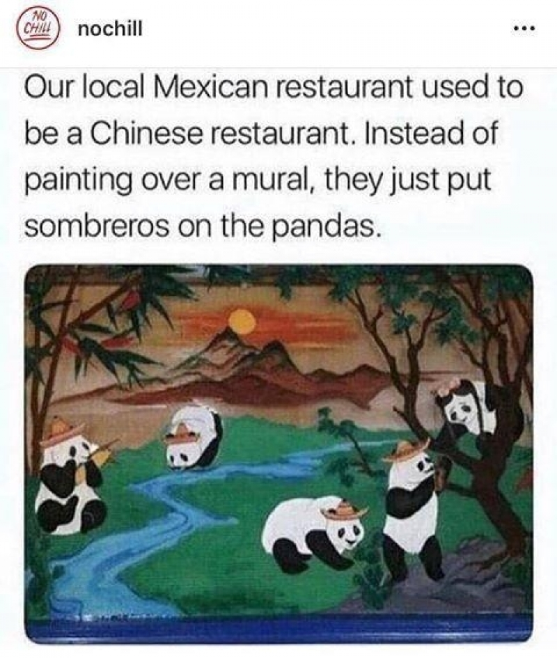 Mexicaanse panda's
