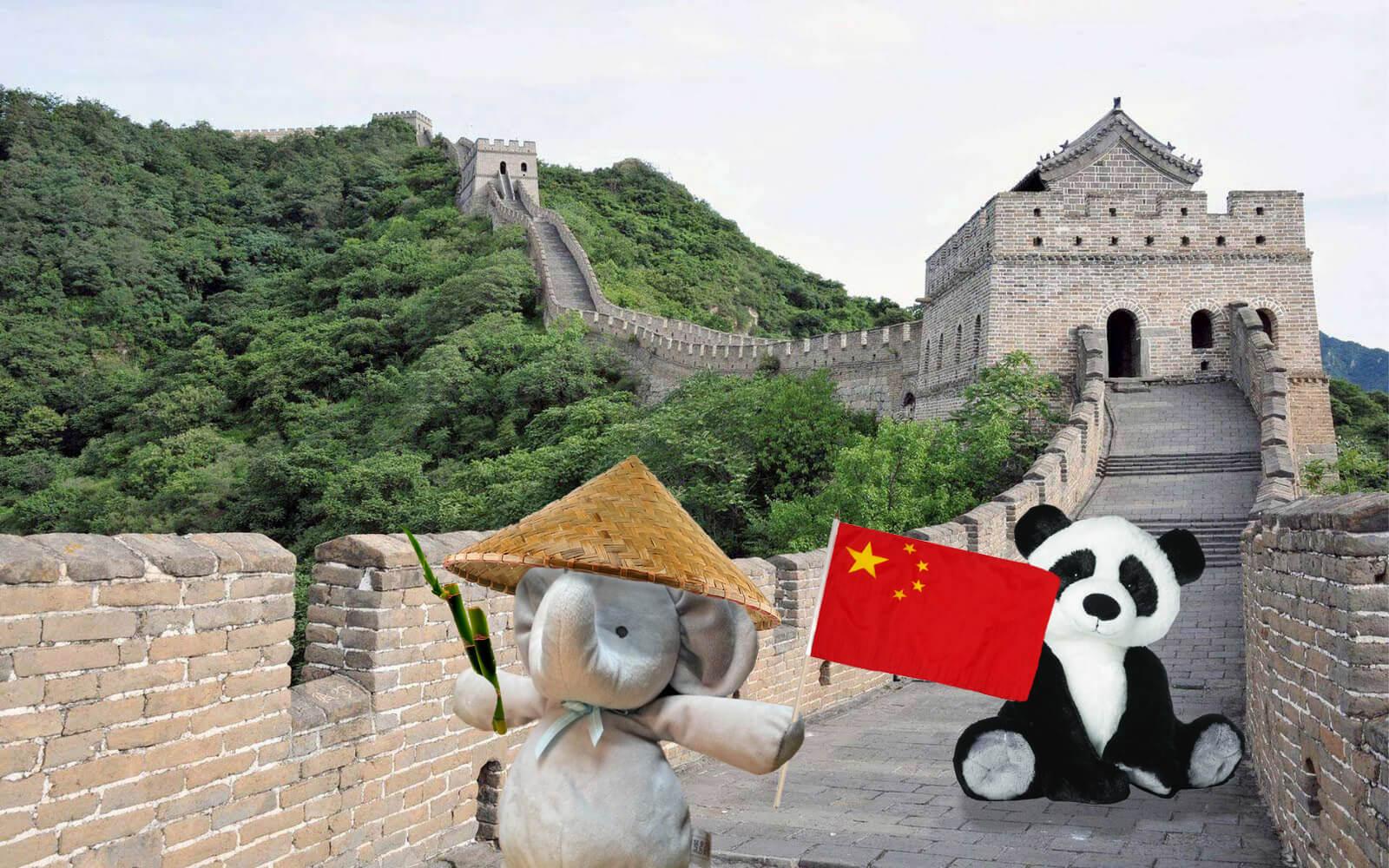 Knuffel gaat op wereldreis