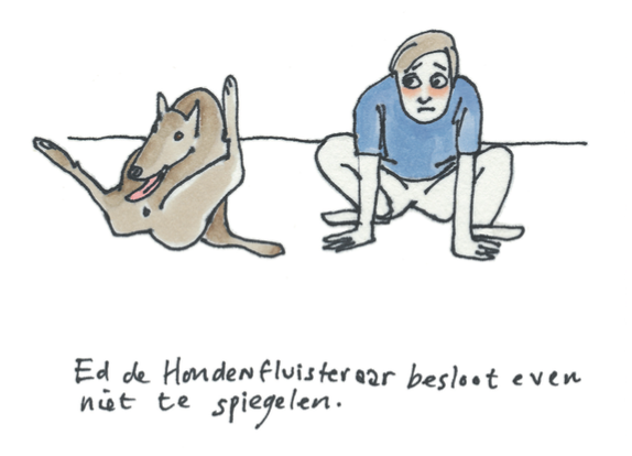 De hond spiegelen