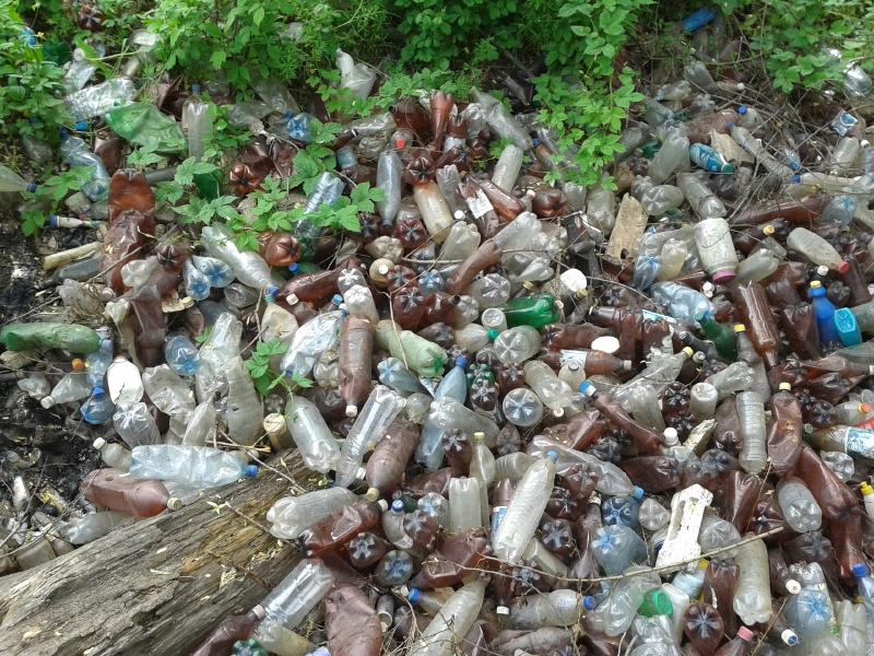 Plastic vissen