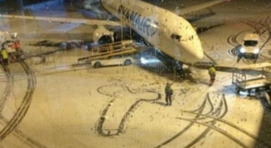 Sneeuwpiemel